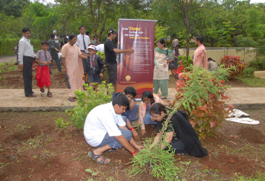 Tree Plantation – Mukta Jivan (2011)